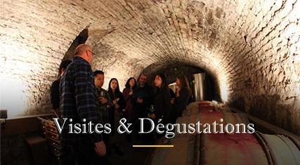 degustation-vins-dijon_1.jpg